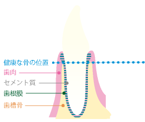 shishu01